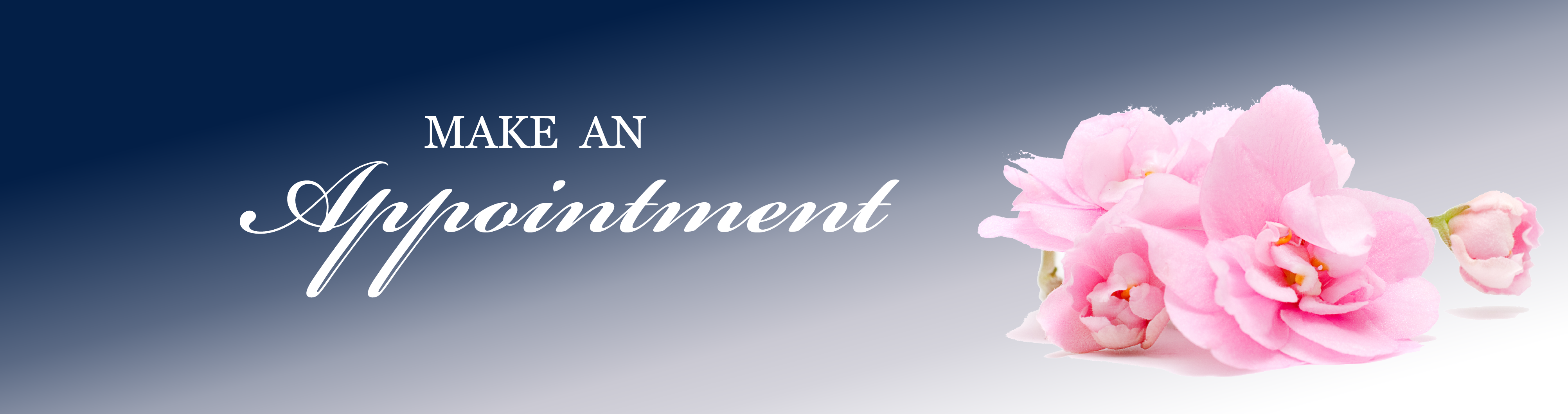 Make An Appointment | The Woman's Group OB GYN Tampa Florida - photo#1